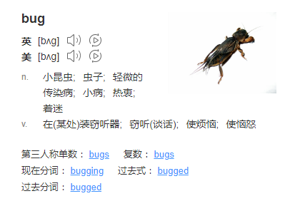 bug的英文意思.png